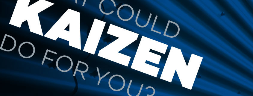 What Could Kaizen Do For You?